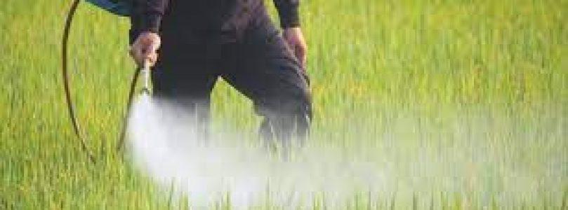 """""""NUEVA HERRAMIENTA PARA EL TSPRL: Evaluación de la exposición en campo a productos fitosanitarios""""."""