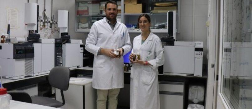 Un nuevo método para cuantificar fenoles, los compuestos 'estrella' del aceite de oliva